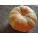 Kaddu/कद्दू/Pumpkin/500gm